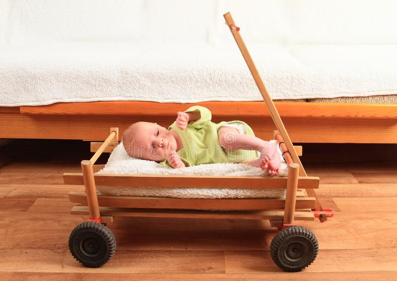 Newborn baby boy lying in carriage royalty free stock images