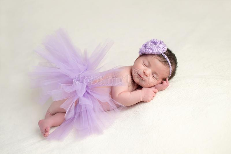 Download Newborn Baby Girl In A Ballerina Costume Stock Image - Image of flower costume  sc 1 st  Dreamstime.com & Newborn Baby Girl In A Ballerina Costume Stock Image - Image of ...