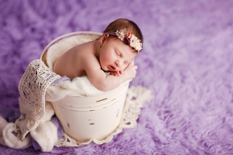 Newborn baby girl - 12 days old stock photography