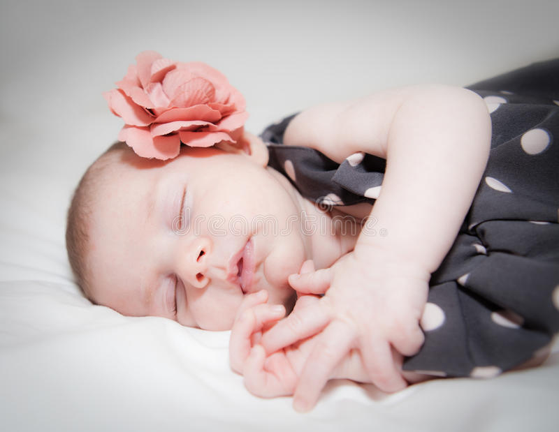 Newborn baby girl with flower sleeping royalty free stock photography