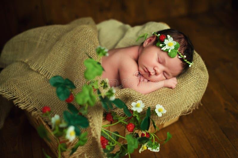 Newborn baby girl has sweet dreams in strawberries stock photos