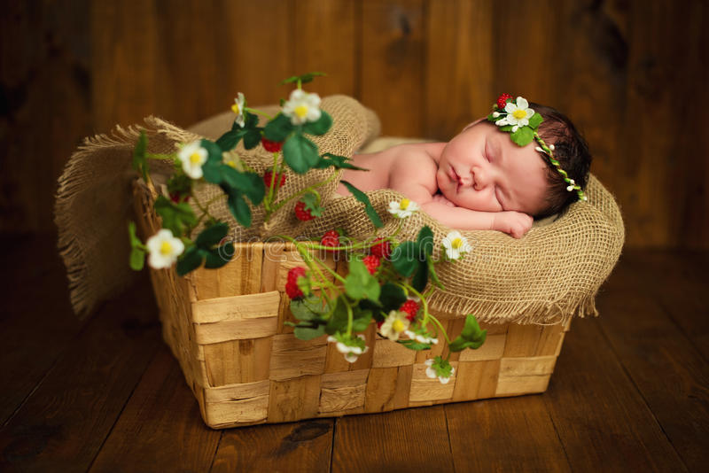 Newborn baby girl has sweet dreams in strawberries.  stock images
