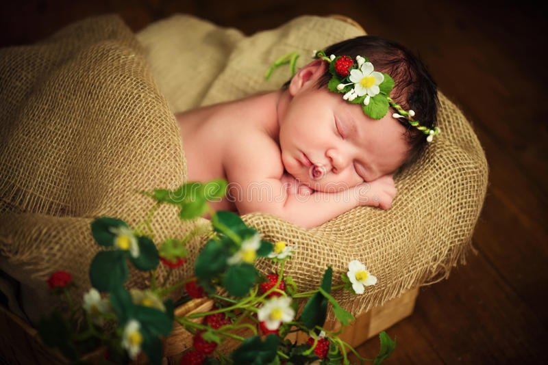 Newborn baby girl has sweet dreams in strawberries.  royalty free stock photo