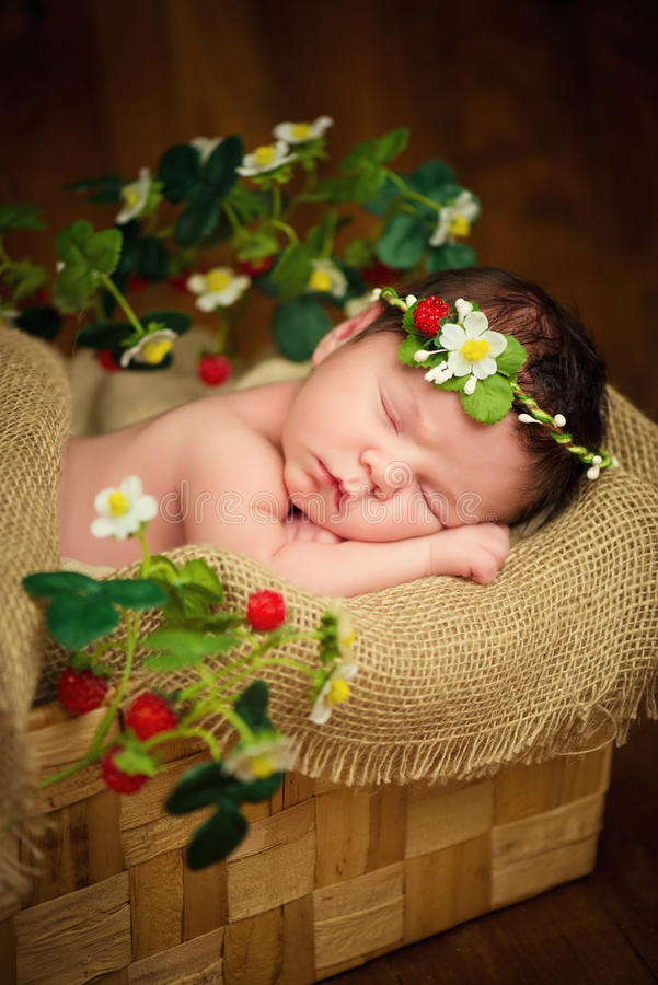 Newborn baby girl has sweet dreams in strawberries.  royalty free stock image
