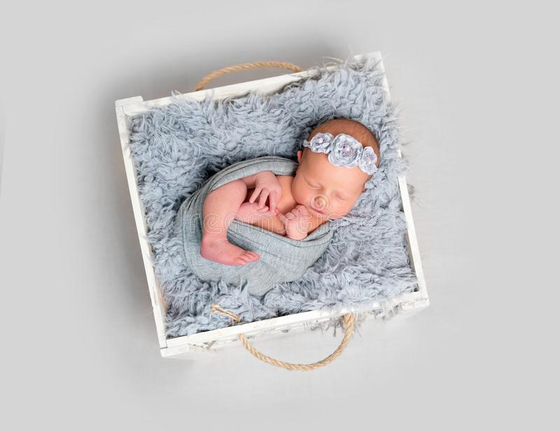 Newborn baby girl asleeps in wooden box. Newborn baby girl sleeps in a wooden box on a llight grey background. Baby girl with flowery headband swaddled in grey stock photos