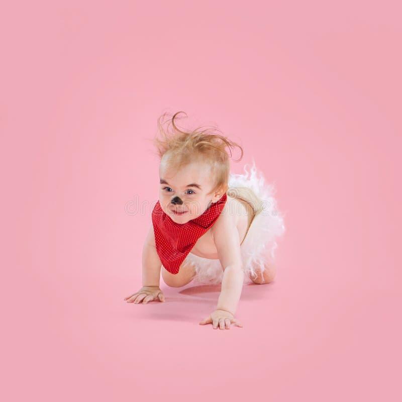 Newborn baby girl wearing a Halloween costume. On pink studio background stock image