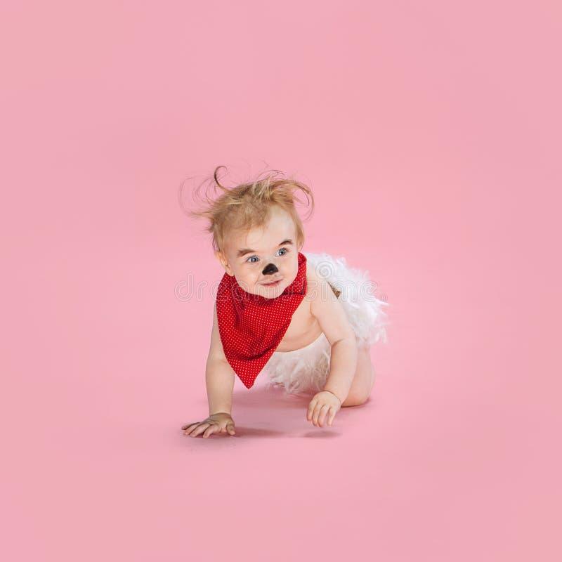 Newborn baby girl wearing a Halloween costume. On pink studio background stock photography