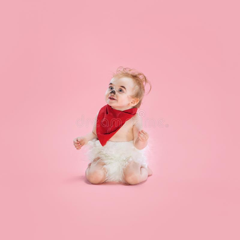 Newborn baby girl wearing a Halloween costume. On pink studio background royalty free stock images