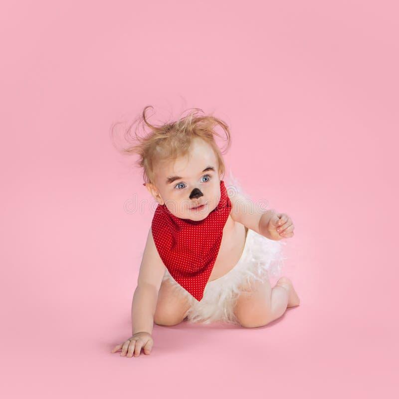 Newborn baby girl wearing a Halloween costume. On pink studio background royalty free stock image
