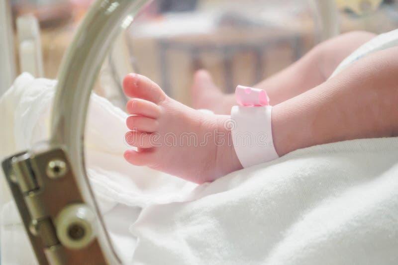 Newborn baby inside incubator in hospital royalty free stock photography