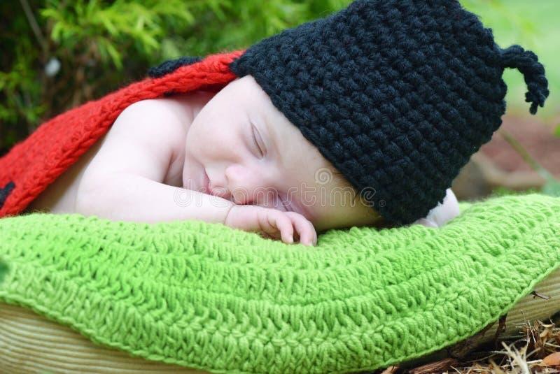 Newborn baby in lady bug costume sleeping on pillow stock photos