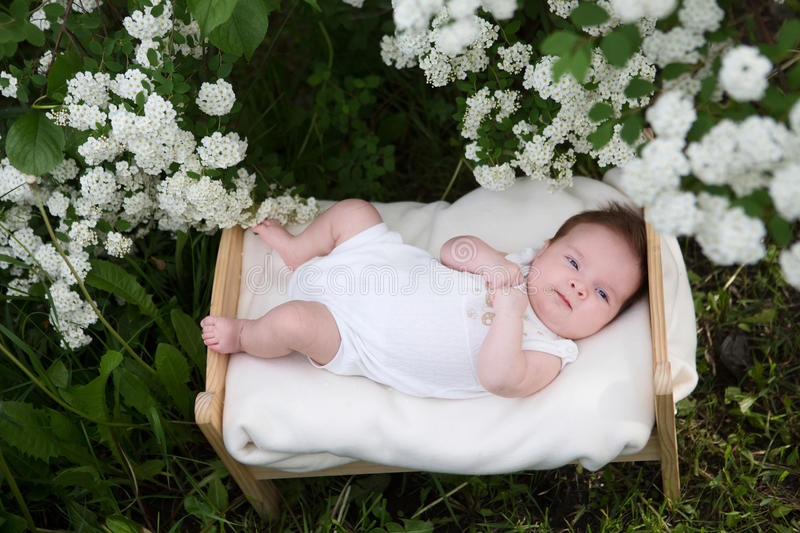 Download newborn baby outside in the grass stock image image of love funny