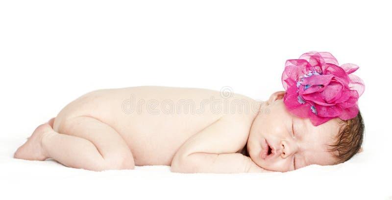Download Newborn Baby Peacefully Sleeping Stock Photo - Image: 32530750