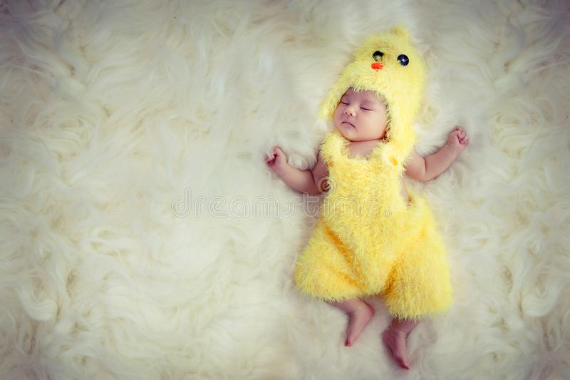 Newborn baby portrait. Happy sleeping lovely cute Asian baby wearing yellow chicken dress suite for Asia Chinese sign zodiac year. Sleep on furry soft fabric stock photo
