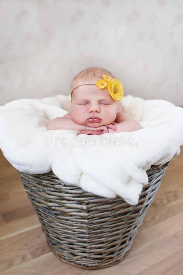 Newborn baby in a round wicker basket royalty free stock photography