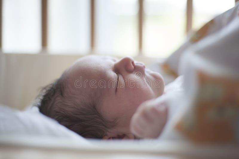 Newborn baby sleeping royalty free stock images