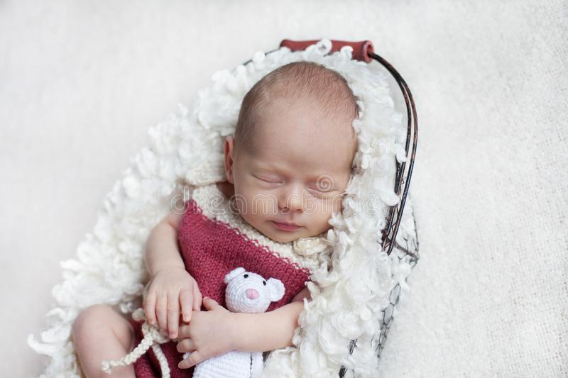 A newborn baby sleeps in a basket in a pink body with a small toy. royalty free stock image