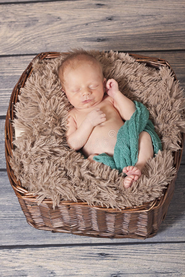 Download newborn in a basket stock photo image of sweet small 34082164