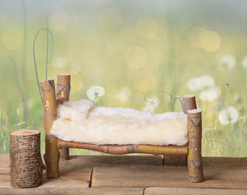 A newborn bed studio digital prop made from Japanese Maple tree branches with a dandelion green meadow nature background. stock photos
