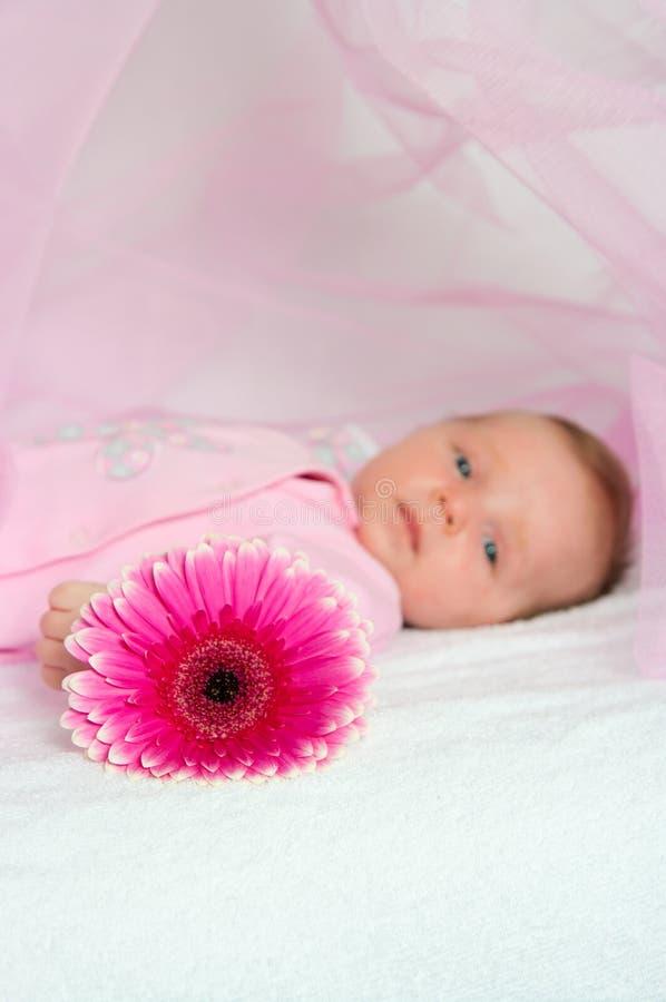 The Newborn Child Royalty Free Stock Image