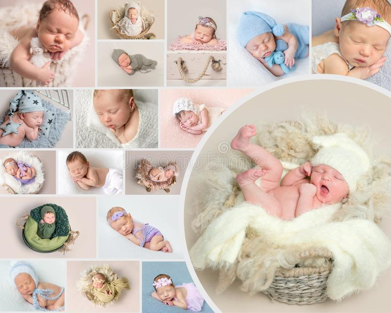 Newborn children posing at set of photos stock photography