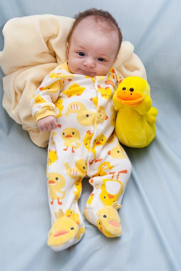 Newborn Ducky Theme royalty free stock photography