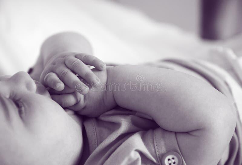 Newborn hands royalty free stock photography