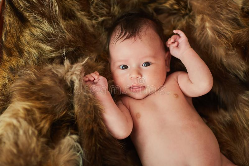 A newborn is lying on the fur and looking into the camera - a fur coat and a baby stock image