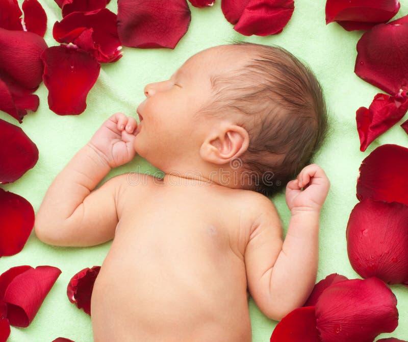 Download Newborn tenderness stock image. Image of smile, newborn - 15633429