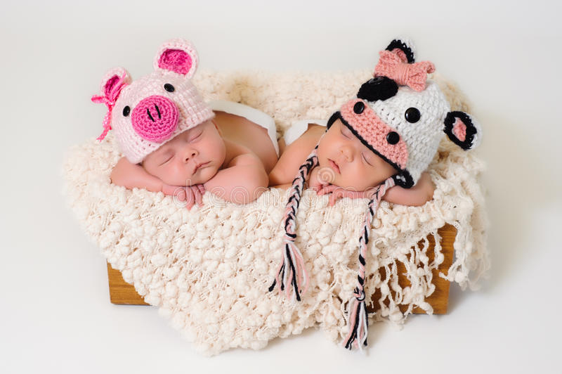 Newborn twin girls wearing pig and cow hats. Sleeping fraternal twin newborn baby girls wearing crocheted pig and cow hats stock photos