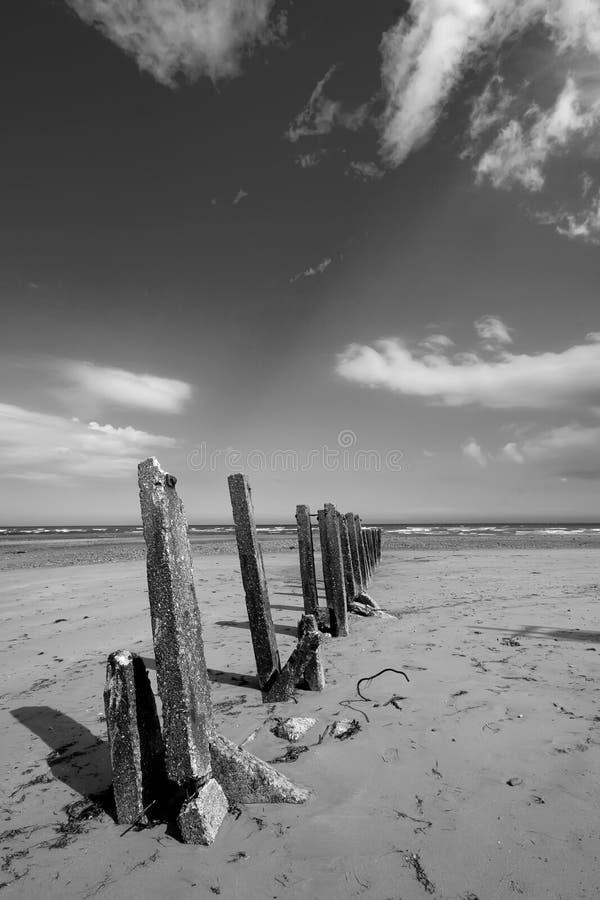 Newcastle na plaży fotografia royalty free