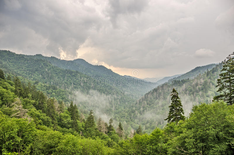 Newfound Gap i den Great Smoky Mountains nationalparken royaltyfri bild