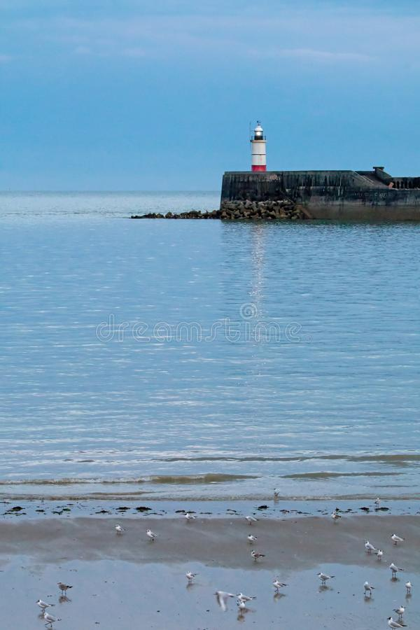 Newhaven Lighthouse at Low Tide. Newhaven Lighthouse on July evening, with birds on beach at low tide and heavy clouds royalty free stock photos