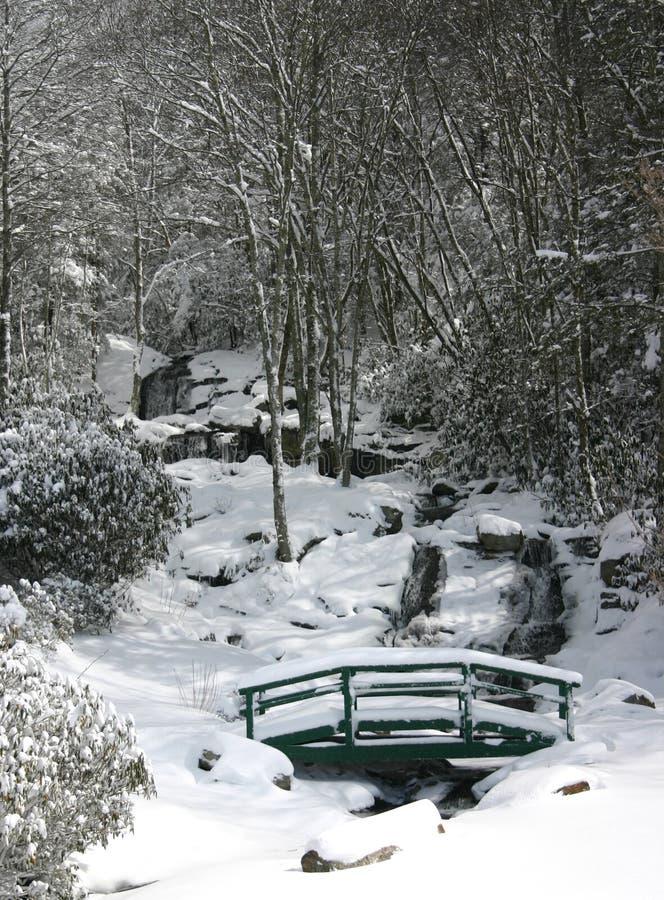 Download Newland Cai Na Neve (o Vert) Foto de Stock - Imagem de cachoeira, congelado: 12813008
