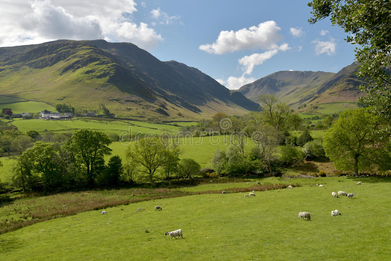 Newlands Valley royalty free stock image