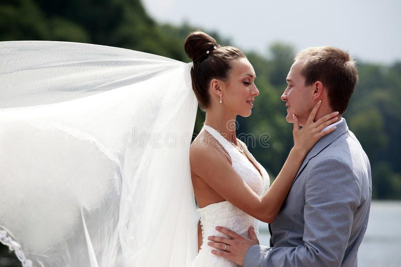 Download Newly-married couple stock photo. Image of dress, attractive - 16028978