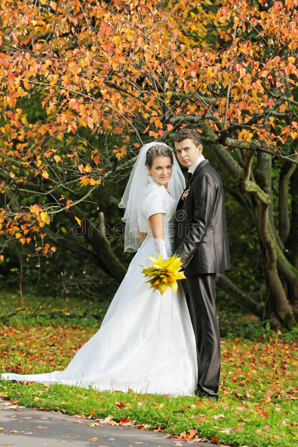 Download The Newly Married Couple Royalty Free Stock Photo - Image: 22281495