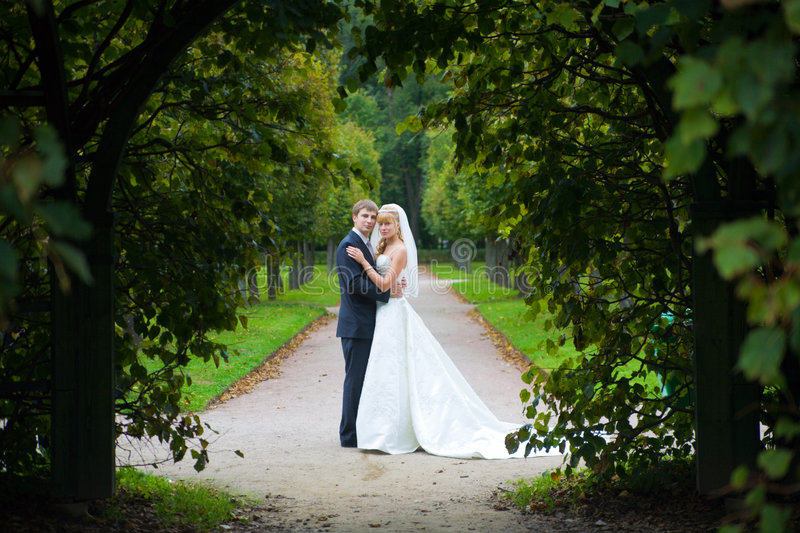 Download The newly married couple stock image. Image of celebration - 9141511