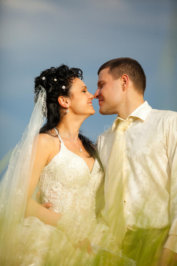 Download Newly-married Couple In Field Stock Images - Image: 19976954