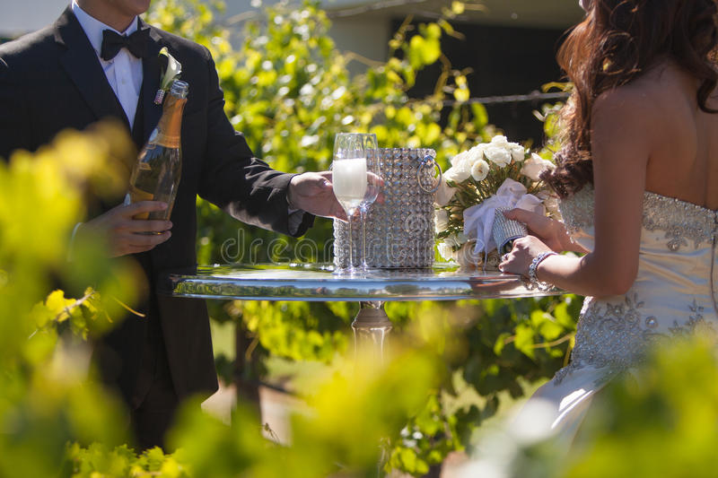 Newly married wed couple. Newly wed married couple toasting with champagne in a vineyard royalty free stock photos