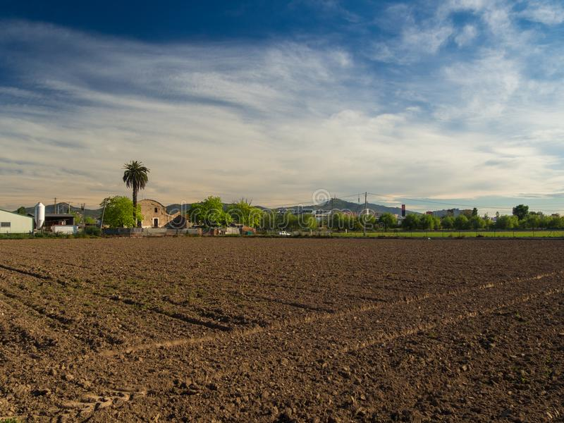 Newly planted field in Barcelona. With a spectacular sky stock images