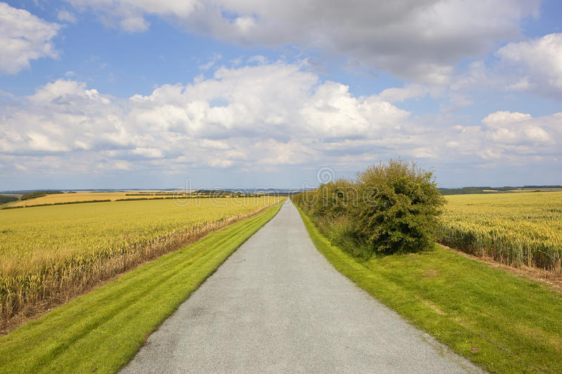 A newly resurfaced farm road in the scenic Yorkshire wolds in summertime. A resurfaced farm road with beautiful yorkshire wolds scenery under a blue summer sky stock photography