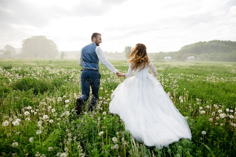 A newly wed couple walking through a grassland, holding hands royalty free stock image