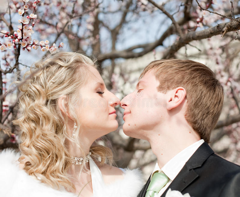 Download Newly Wedded Couple On Open Air Stock Image - Image of beautiful, european: 21767499