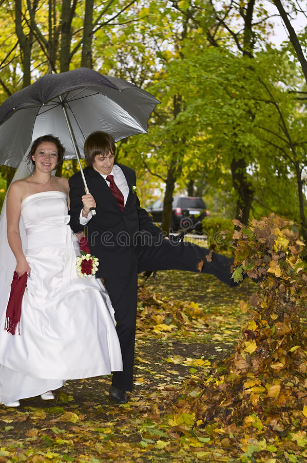 Download Newlywed Couple In Autumn Park Stock Photo - Image: 11938028