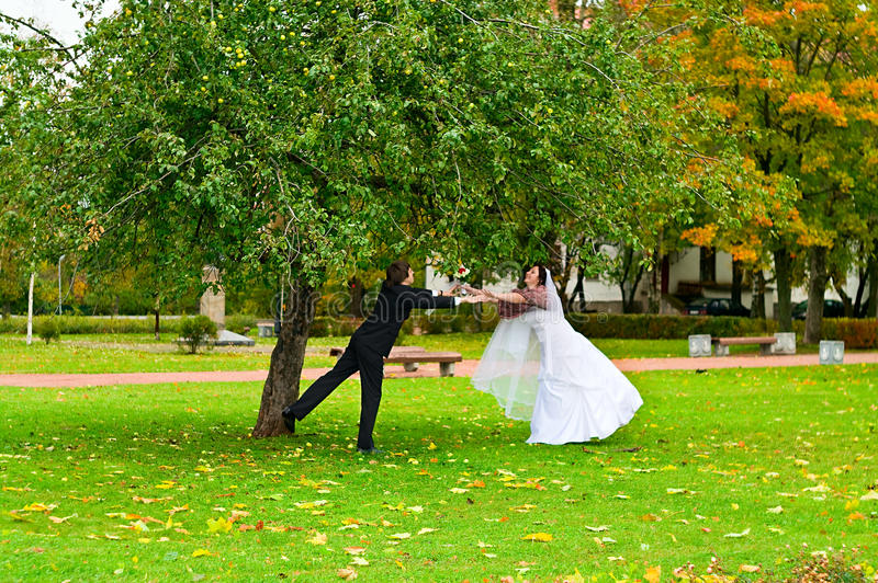 Newlywed couple in autumn park royalty free stock photography