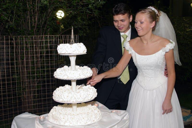 Download Newlywed Couple Cutting Cake Stock Photo - Image: 4644572