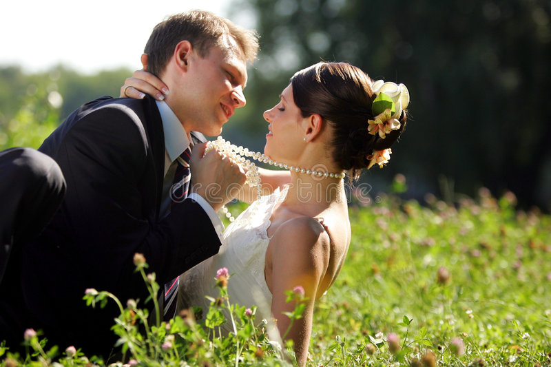 newlywed del campo delle coppie immagine stock libera da diritti