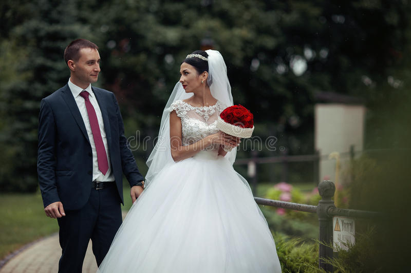 Newlywed valentynes posing in a romantic european park with rose stock photography