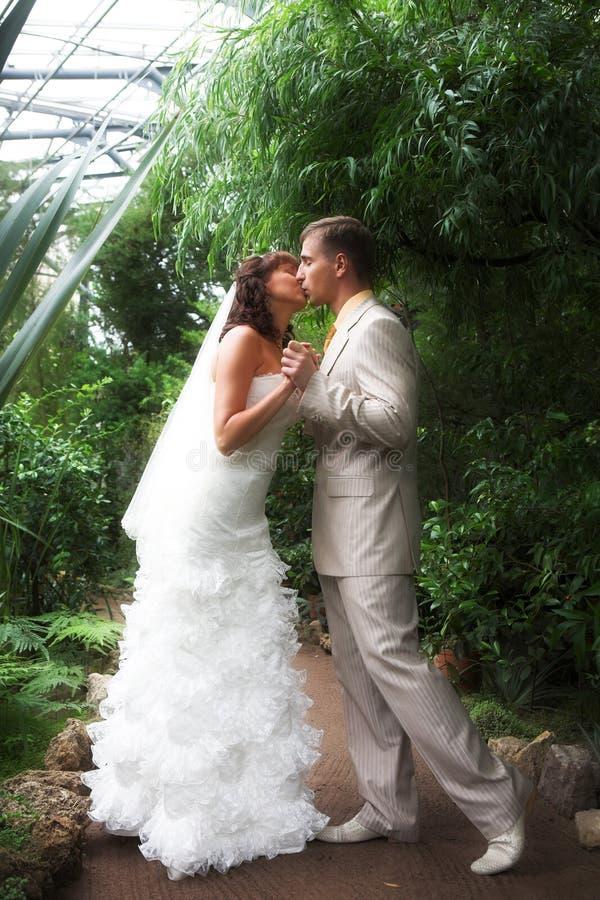 newlyweds περίπατος στοκ εικόνες